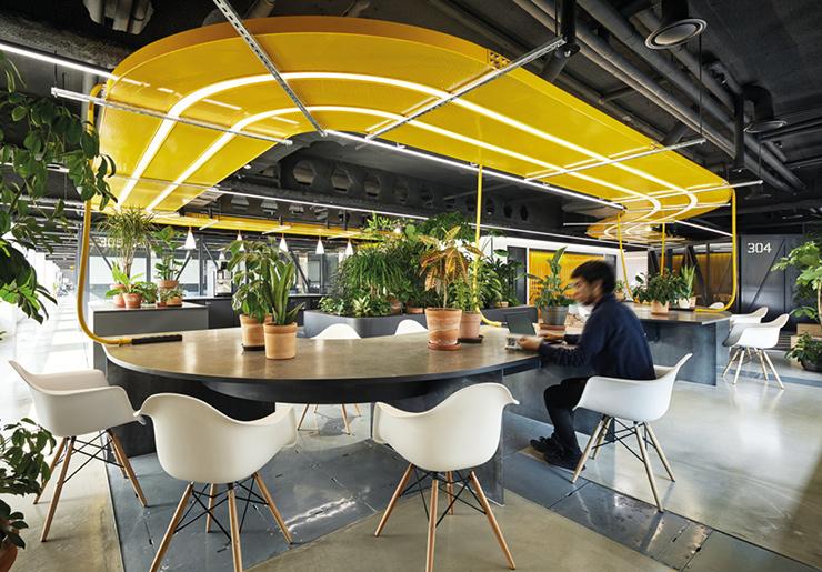 Bố trí sân vườn phù hợp với diện tích, vị trí thiết kế, không gian