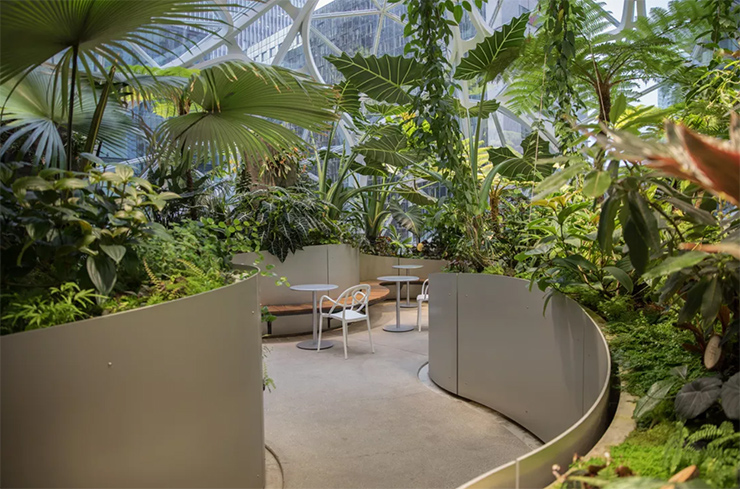 văn phòng xanh nổi tiếng của amazon