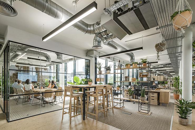 văn phòng sử dụng nội thất tự nhiên