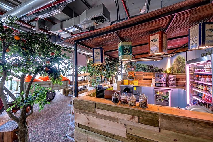 thiết kế văn phòng xanh nổi tiếng của google