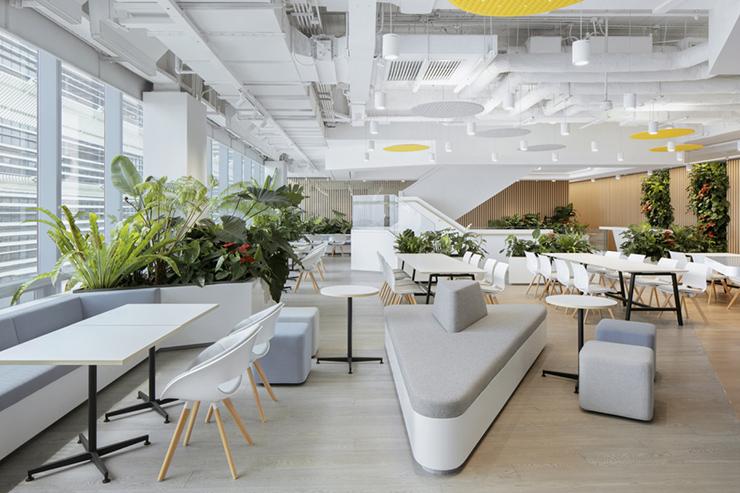 thiết kế văn phòng xanh hiện đại cao cấp