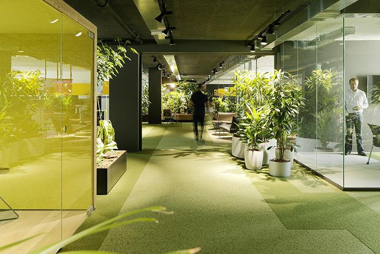 trang trí cây xanh hành lang văn phòng