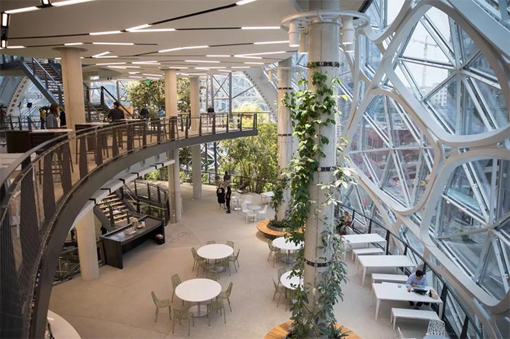 văn phòng xanh nổi tiếng amazon