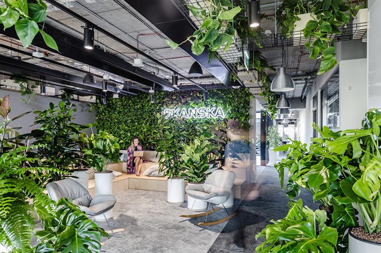 mẫu thiết kế văn phòng xanh đẹp