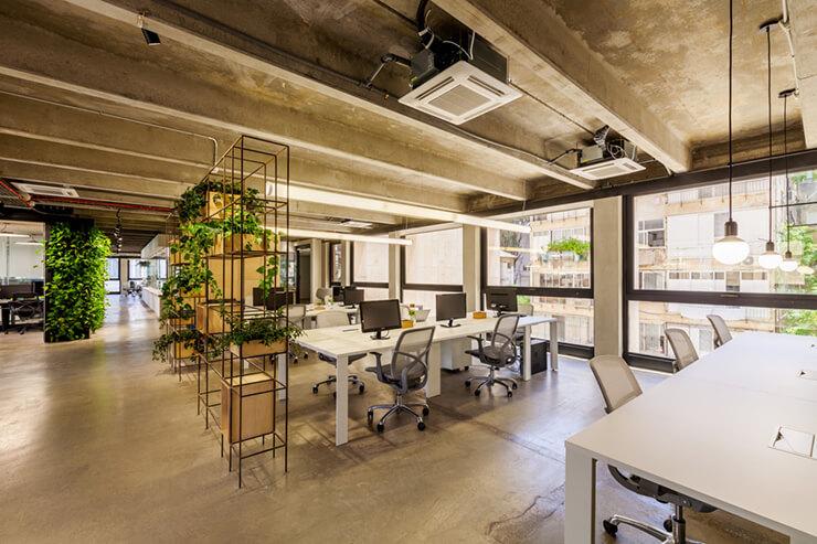 vách ngăn cây xanh trong văn phòng