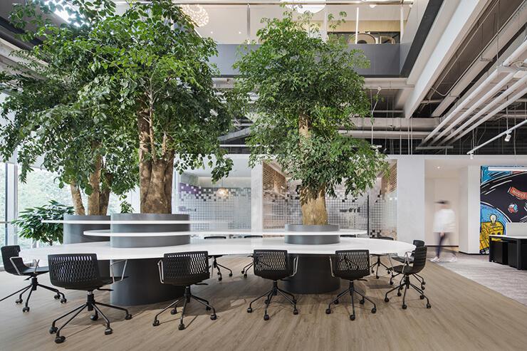 văn phòng xanh với cây xanh lớn