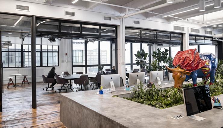 ý tưởng khu vườn xanh trong văn phòng
