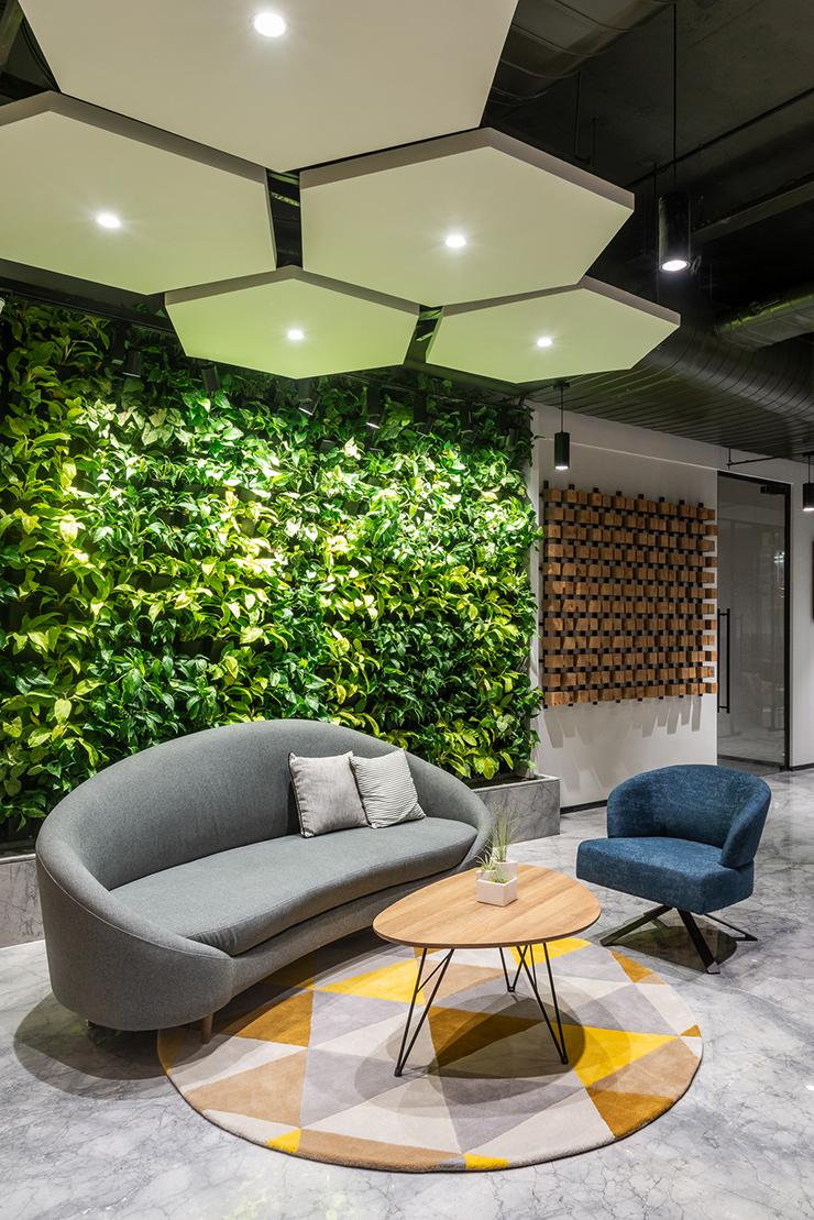 ý tưởng thiết kế vườn tường xanh