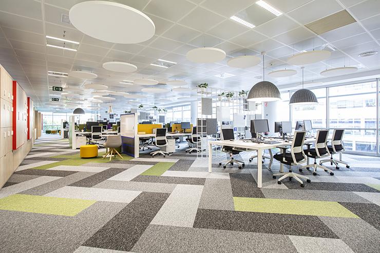 thiết kế văn phòng mở sáng tạo với thảm trải sàn