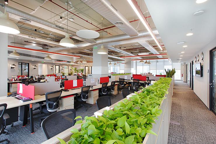 thiết kế văn phòng mở gần gũi thiên nhiên