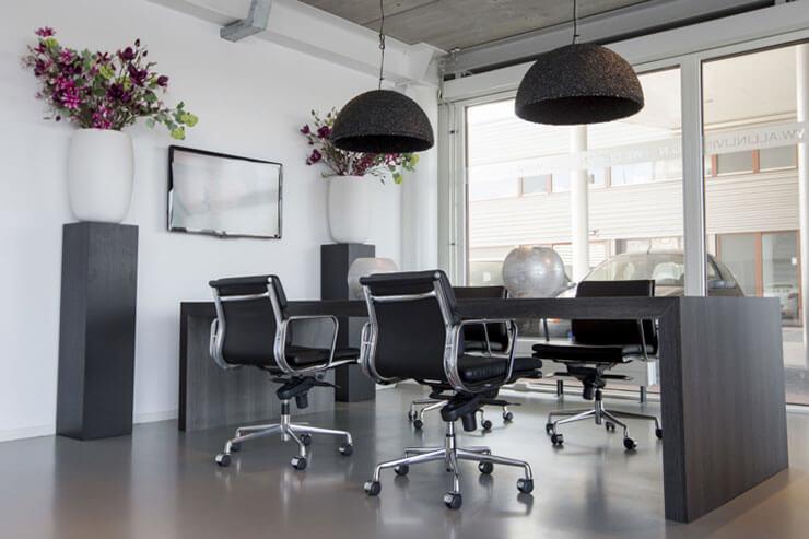 Cây xanh phong thủy thường xuất hiện tại các văn phòng, giúp công việc hanh thông, thuận lợi