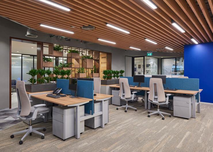 Sử dụng cây xanh để tạo vách ngăn đang được áp dụng ở rất nhiều công ty hiện nay