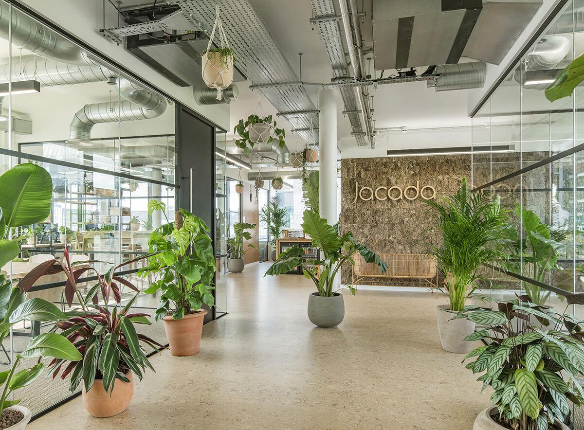 Không gian xanh tại văn phòng công ty du lịch Jacada, từ đó mang lại văn hóa sống xanh cho nhân viên